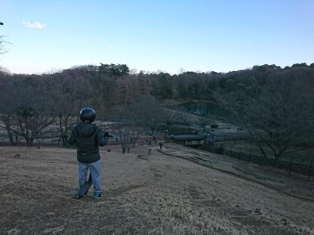 f:id:sumomomomoko:20170219225015j:plain