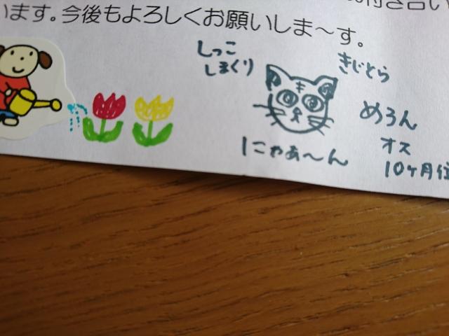 f:id:sumomomomoko:20170924180436j:plain