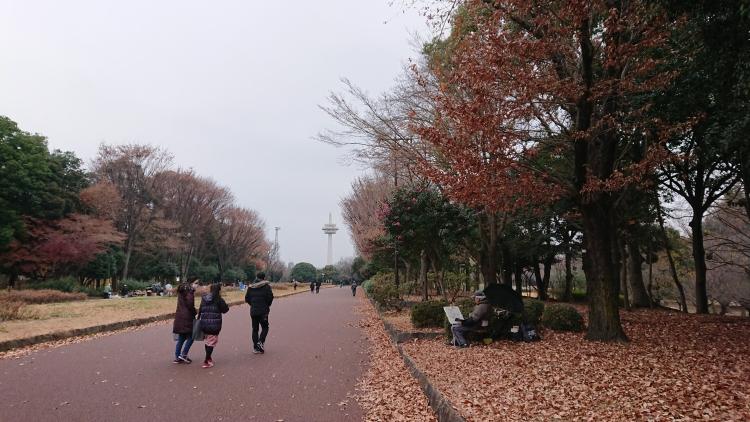 f:id:sumomomomoko:20191221231004j:plain