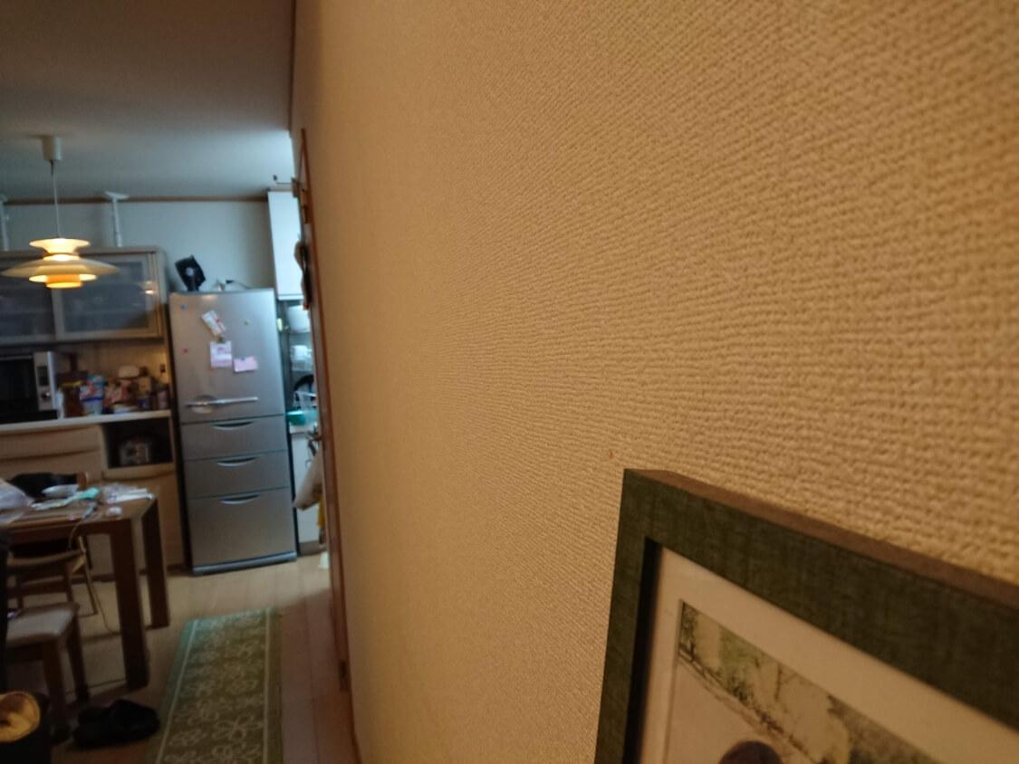 f:id:sumomomomoko:20200308215827j:plain