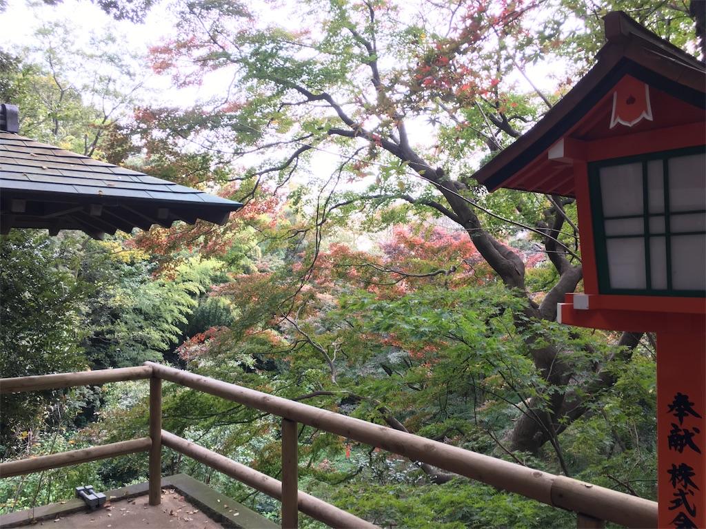 f:id:sumuji-maru:20181118204145j:image