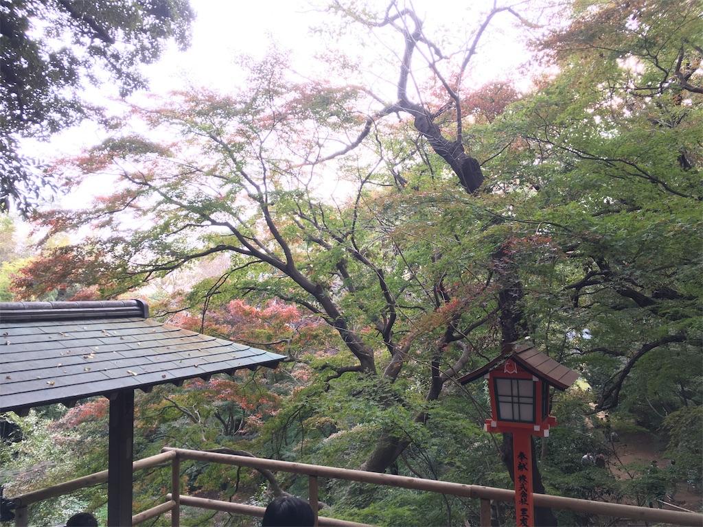 f:id:sumuji-maru:20181118204159j:image