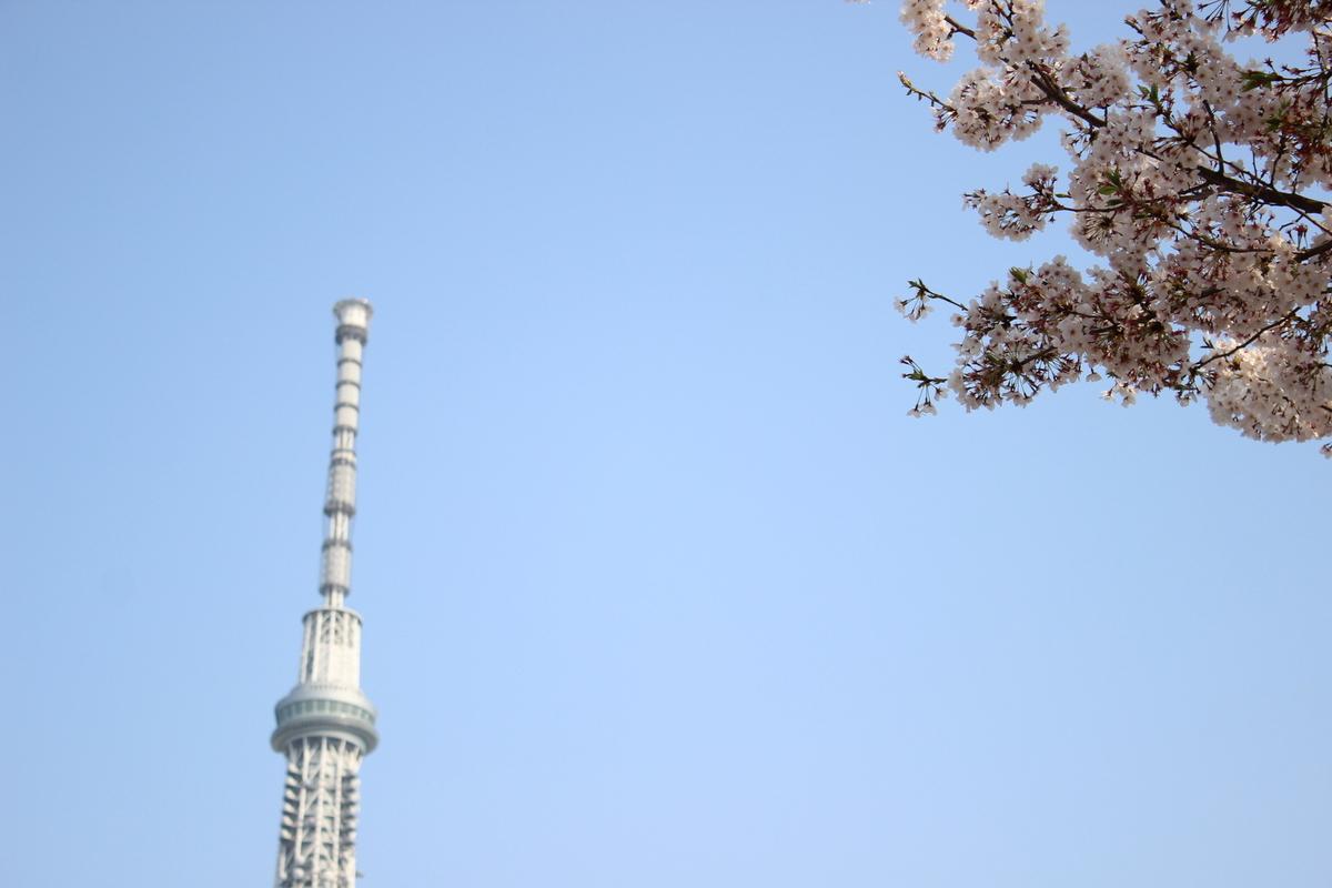 f:id:sumuji-maru:20190416233138j:plain