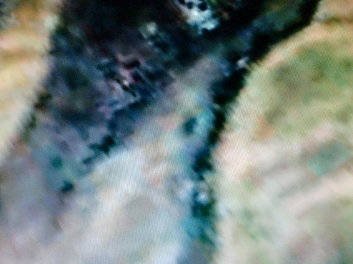 f:id:sun369:20210613062257j:plain