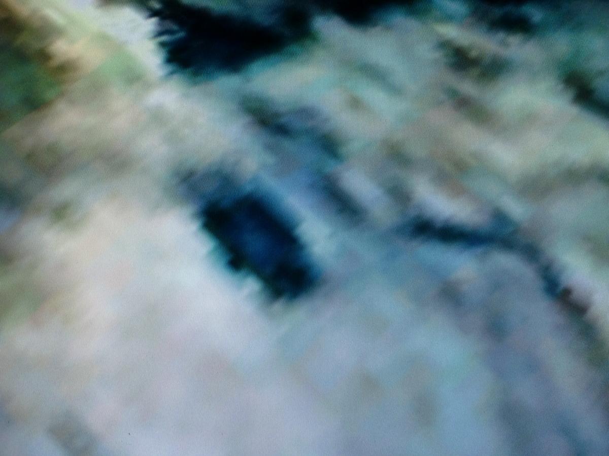 f:id:sun369:20210613062540j:plain