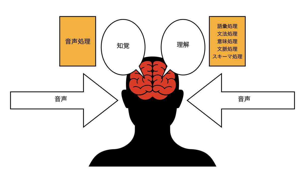 英語の知覚
