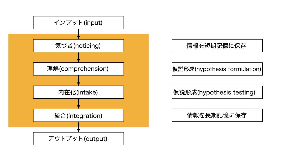 第二言語習得の認知プロセス
