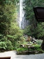 熊野 飛瀧神社