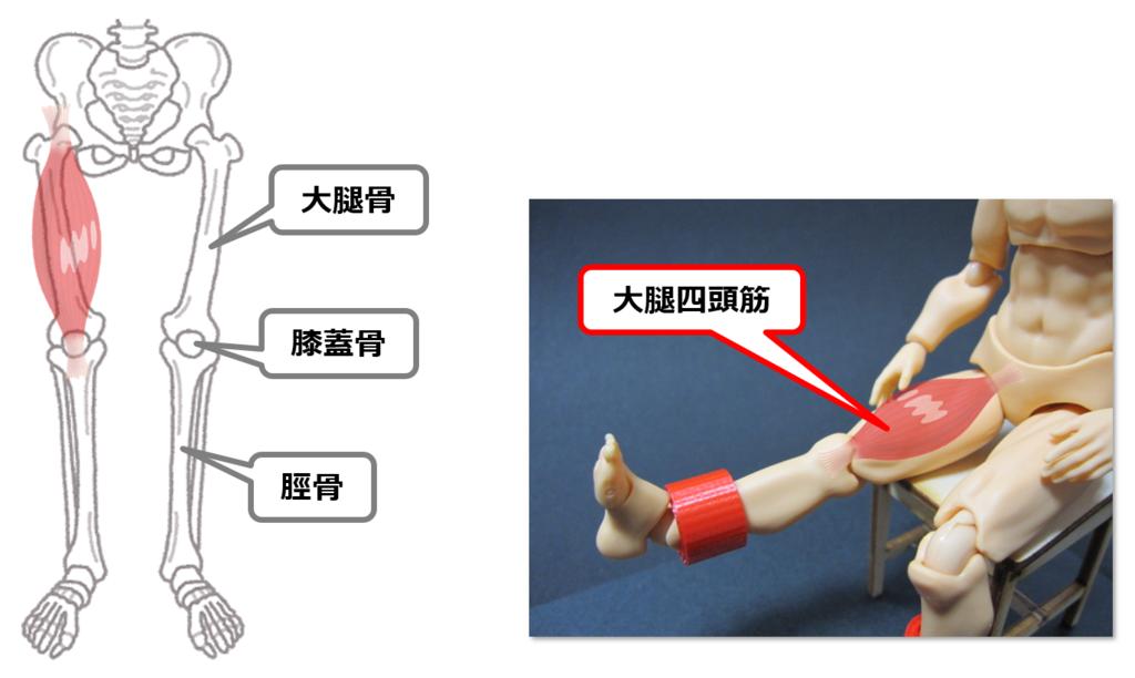 f:id:sunao-hiroba:20190223191723p:plain