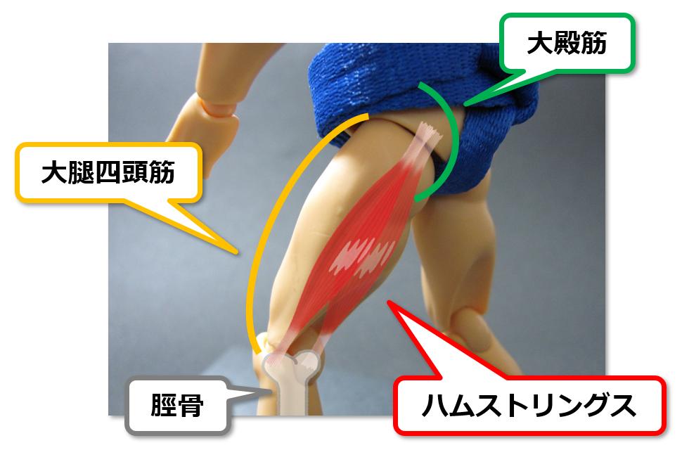 f:id:sunao-hiroba:20190412212840p:plain