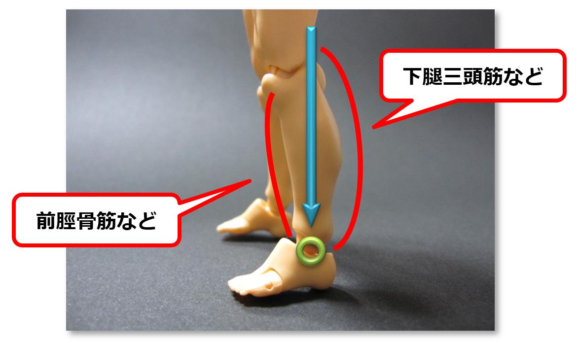 f:id:sunao-hiroba:20190414143132p:plain