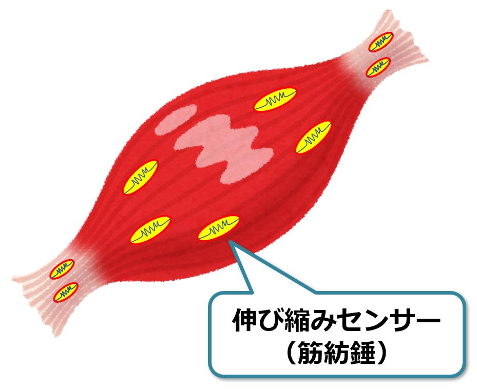 f:id:sunao-hiroba:20190417121939p:plain