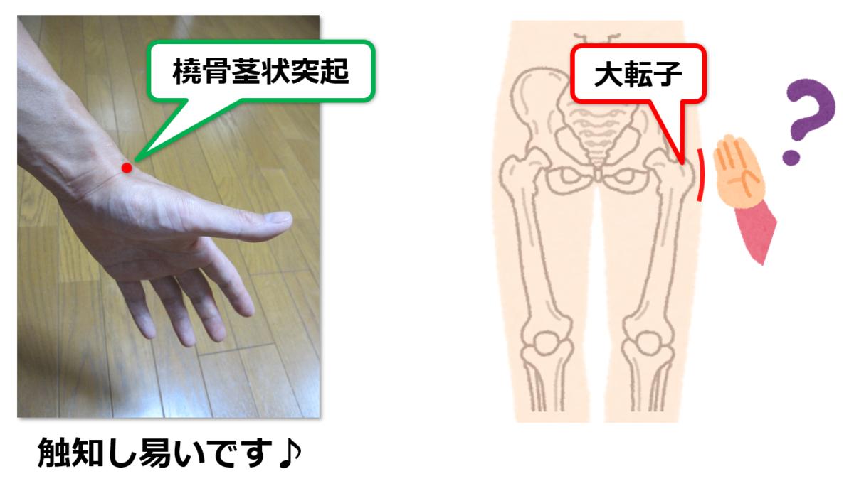 f:id:sunao-hiroba:20190626150128p:plain