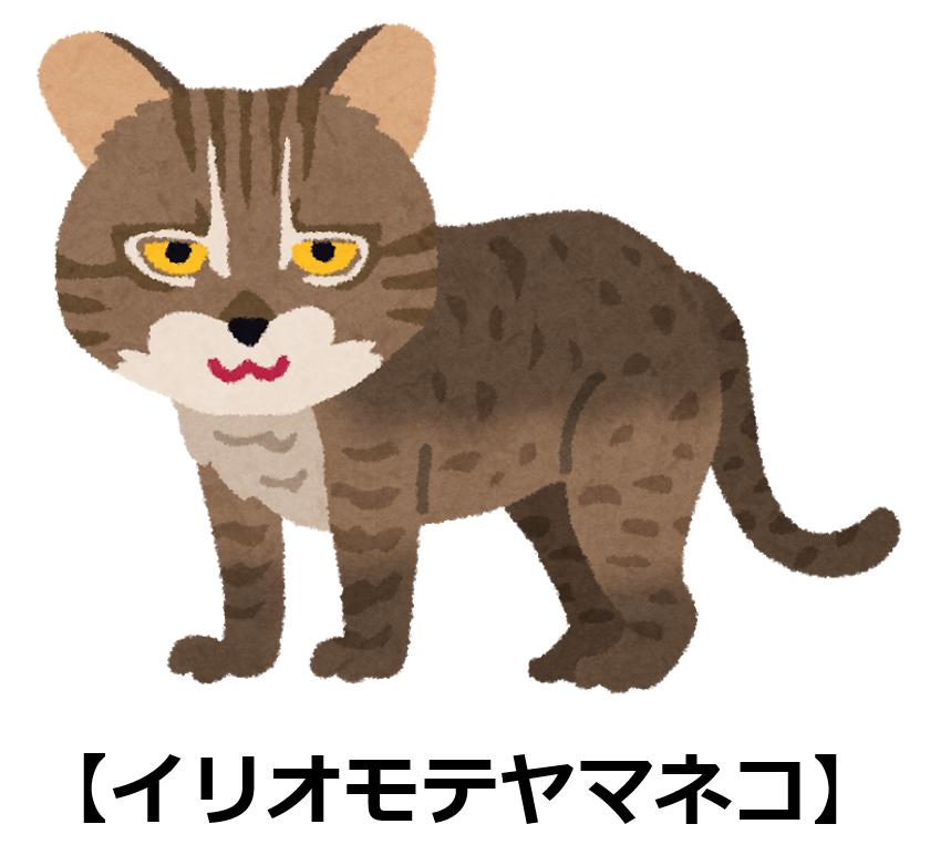 f:id:sunao-hiroba:20190905202617p:plain