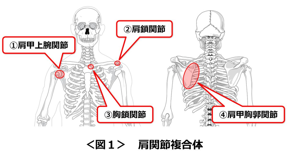 f:id:sunao-hiroba:20200911195027p:plain