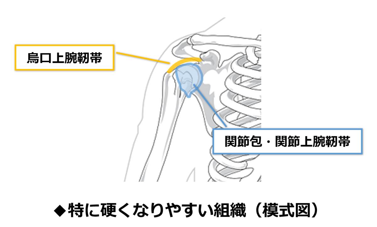 f:id:sunao-hiroba:20200918160029p:plain