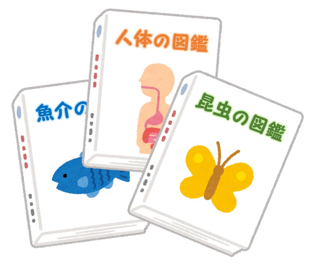 f:id:sunao-hiroba:20210109132603p:plain