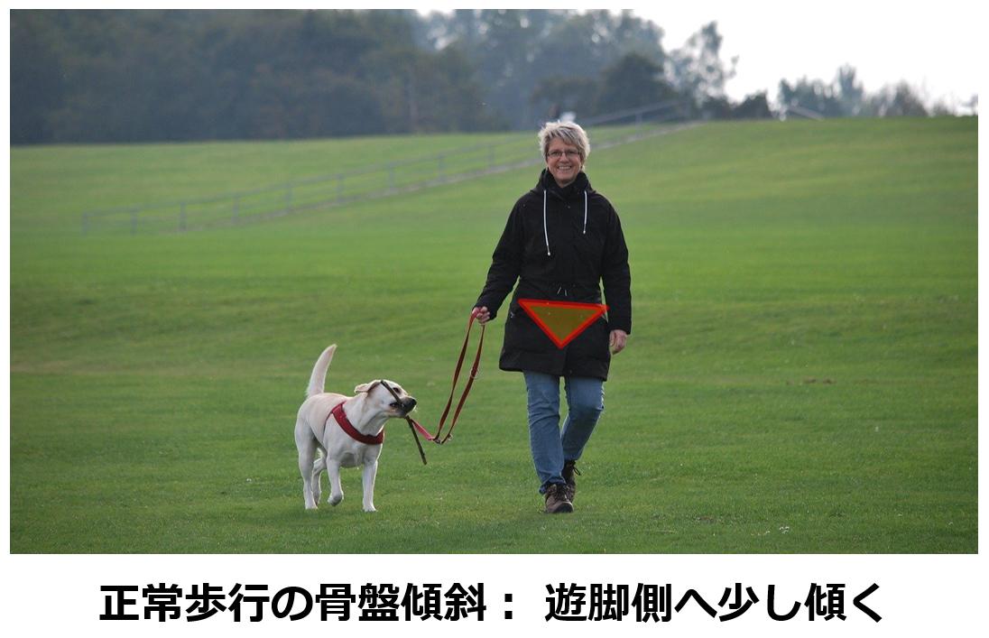 f:id:sunao-hiroba:20210424112543p:plain