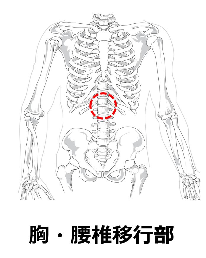 f:id:sunao-hiroba:20210723171948p:plain