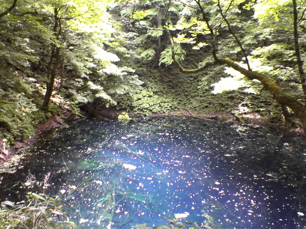 f:id:sunaowamuteki:20180405101752j:plain