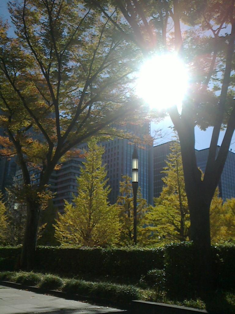 f:id:sunaowamuteki:20180731202521j:plain