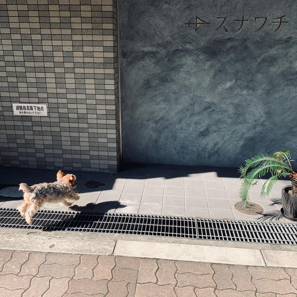 f:id:sunawachi_leather:20210215182027j:plain