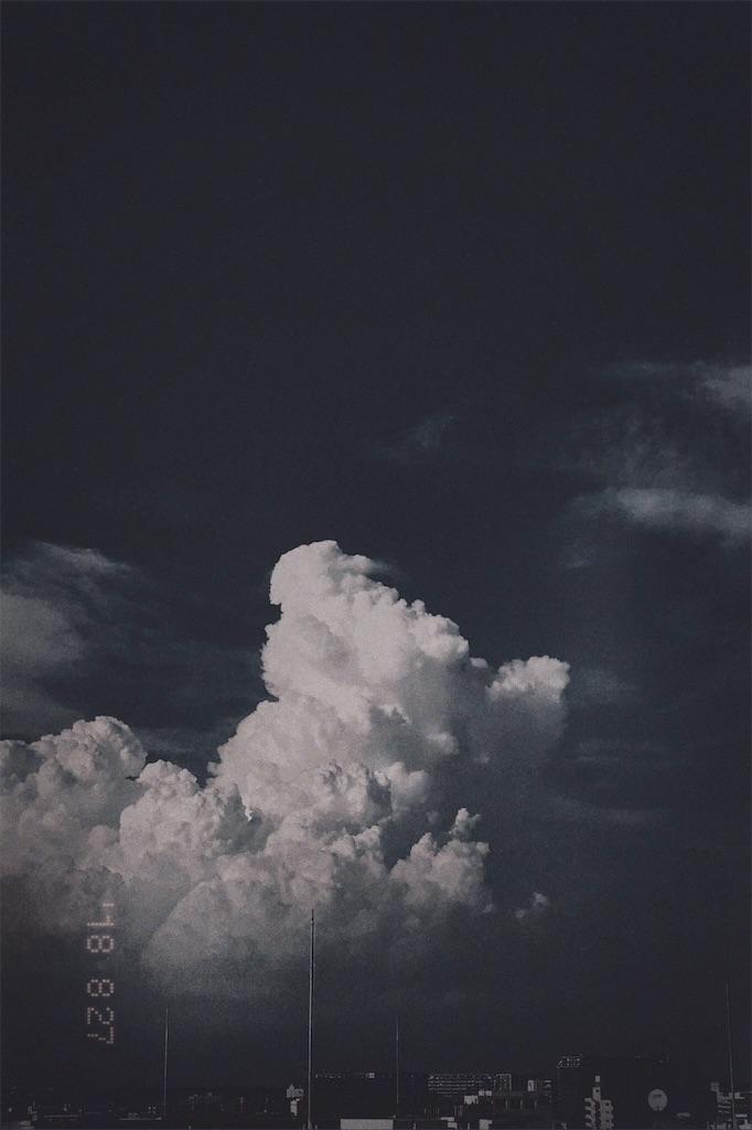 f:id:sundrivertakuya:20190530091607j:image