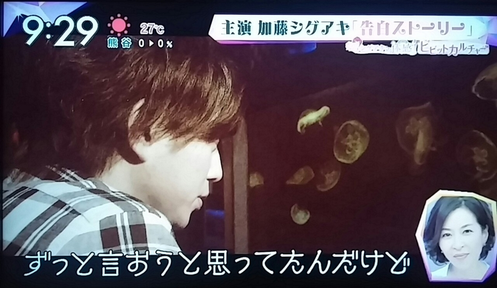 f:id:sunflower-shigeaki:20161128001009j:plain