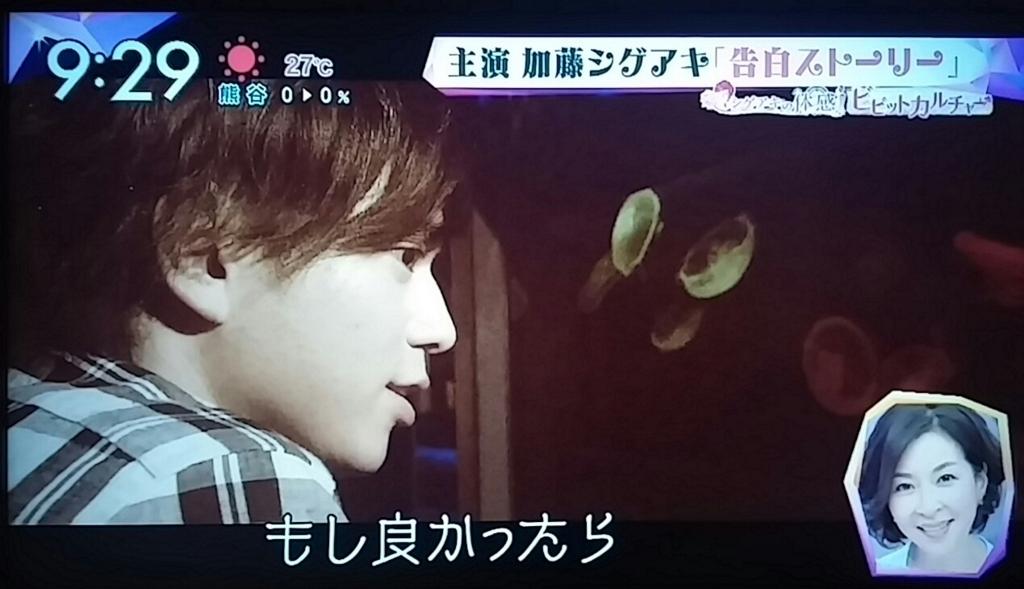 f:id:sunflower-shigeaki:20161128001041j:plain