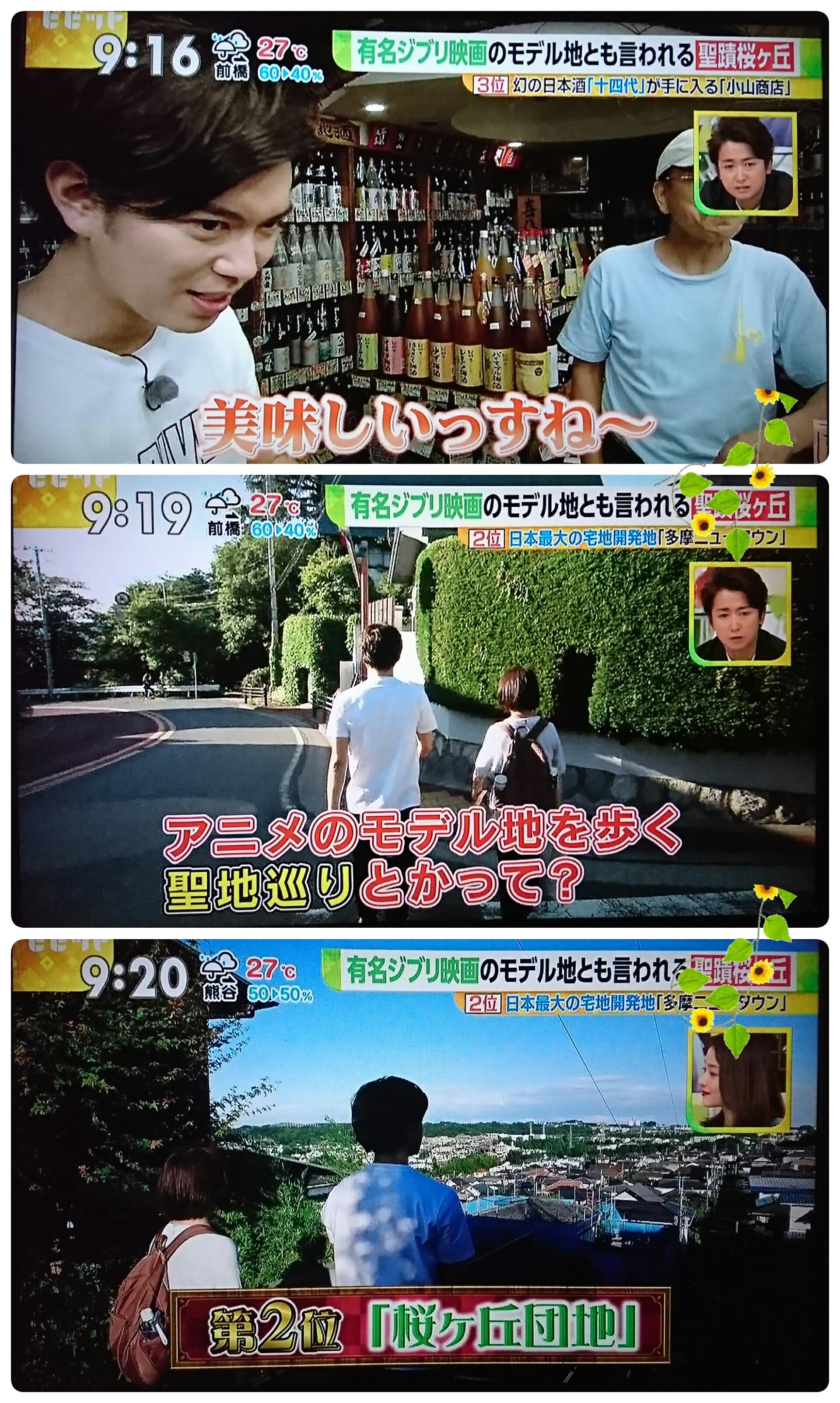 f:id:sunflower-shigeaki:20170708205340j:image