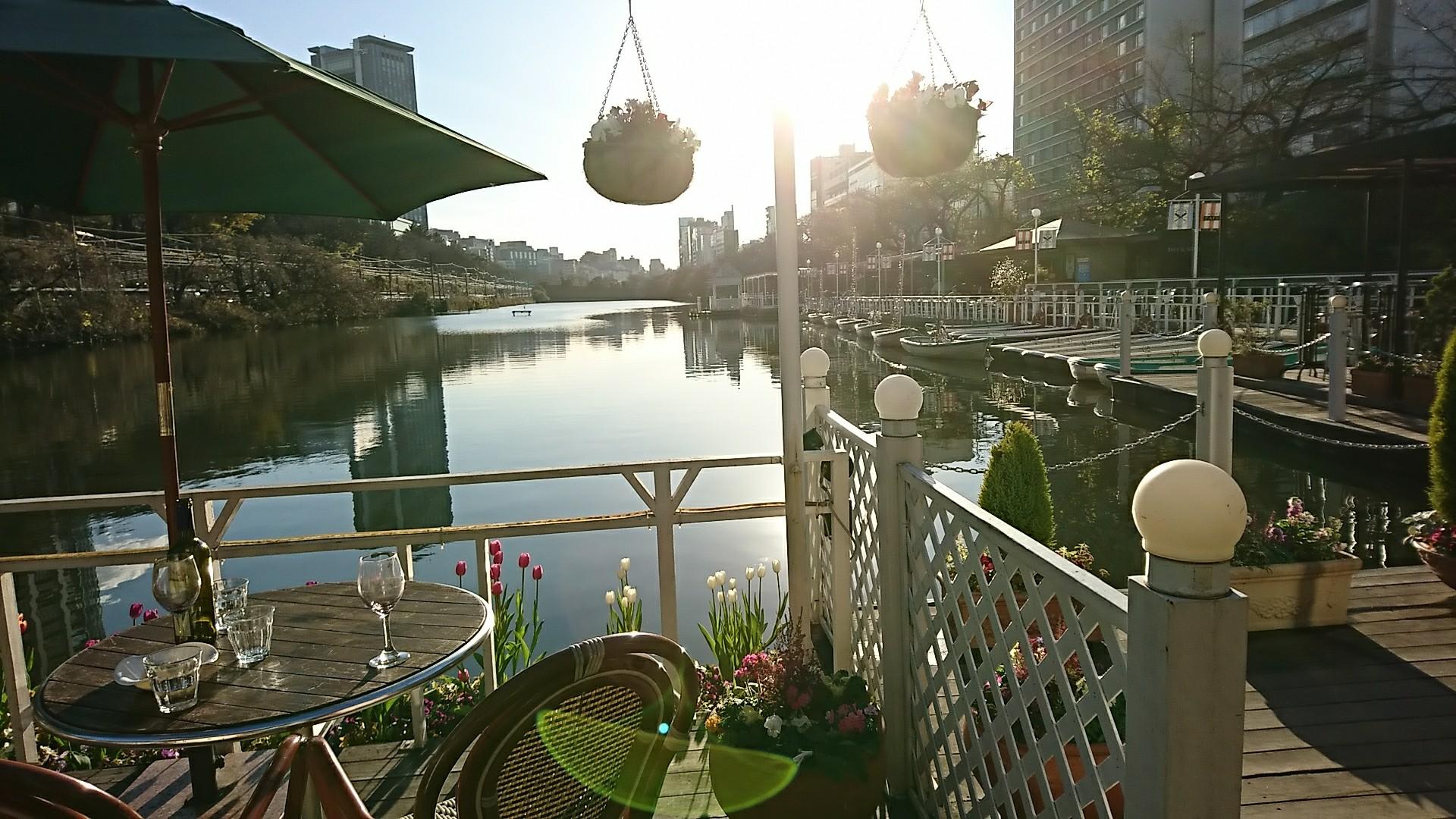 f:id:sunflower-shigeaki:20171231162745j:image