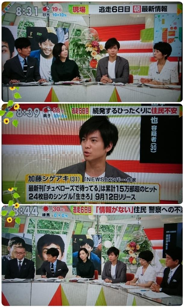 f:id:sunflower-shigeaki:20180817221916j:plain