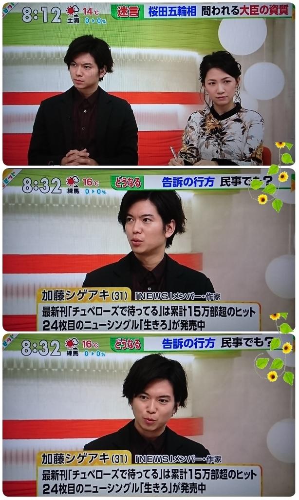 f:id:sunflower-shigeaki:20181124213906j:plain