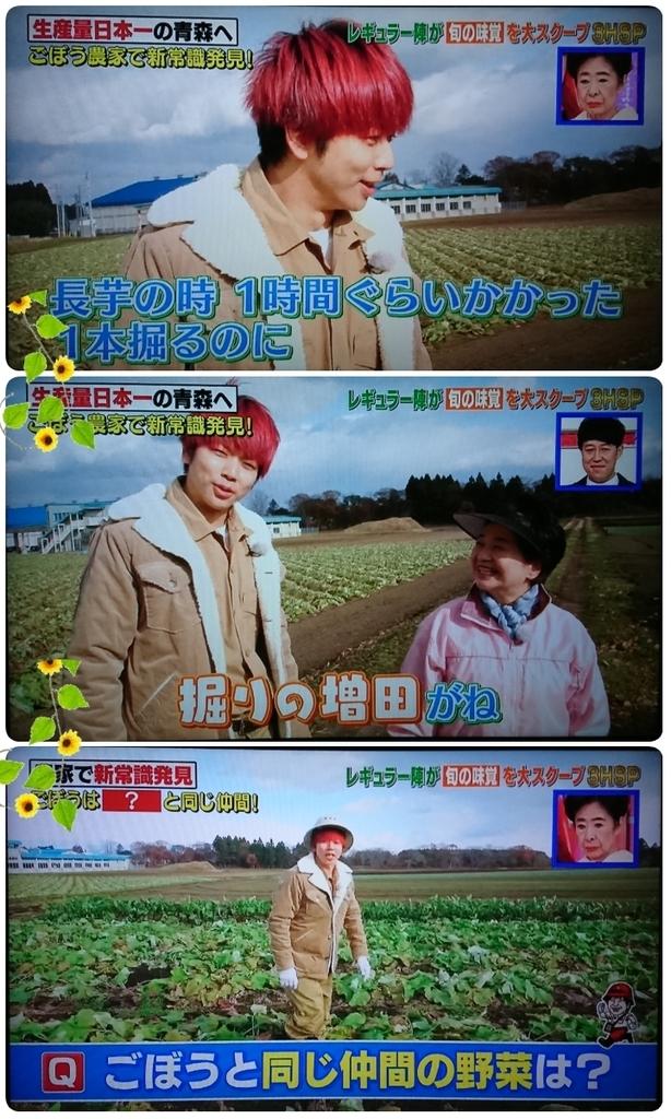 f:id:sunflower-shigeaki:20190112000828j:plain