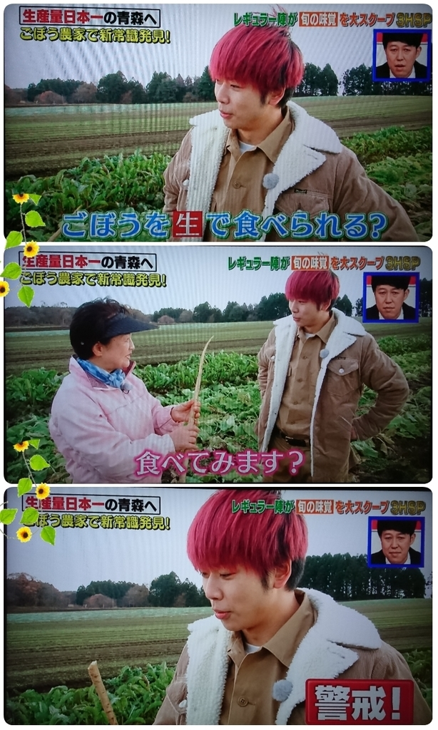 f:id:sunflower-shigeaki:20190112000836j:plain