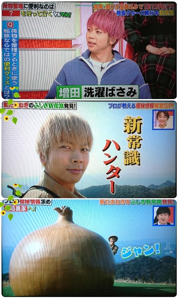 f:id:sunflower-shigeaki:20190416210243j:plain