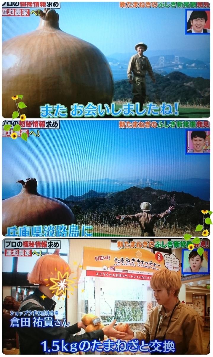 f:id:sunflower-shigeaki:20190416210254j:plain