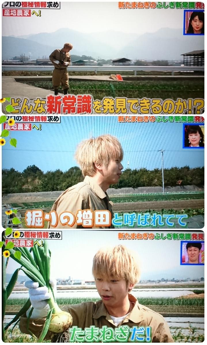 f:id:sunflower-shigeaki:20190416210301j:plain