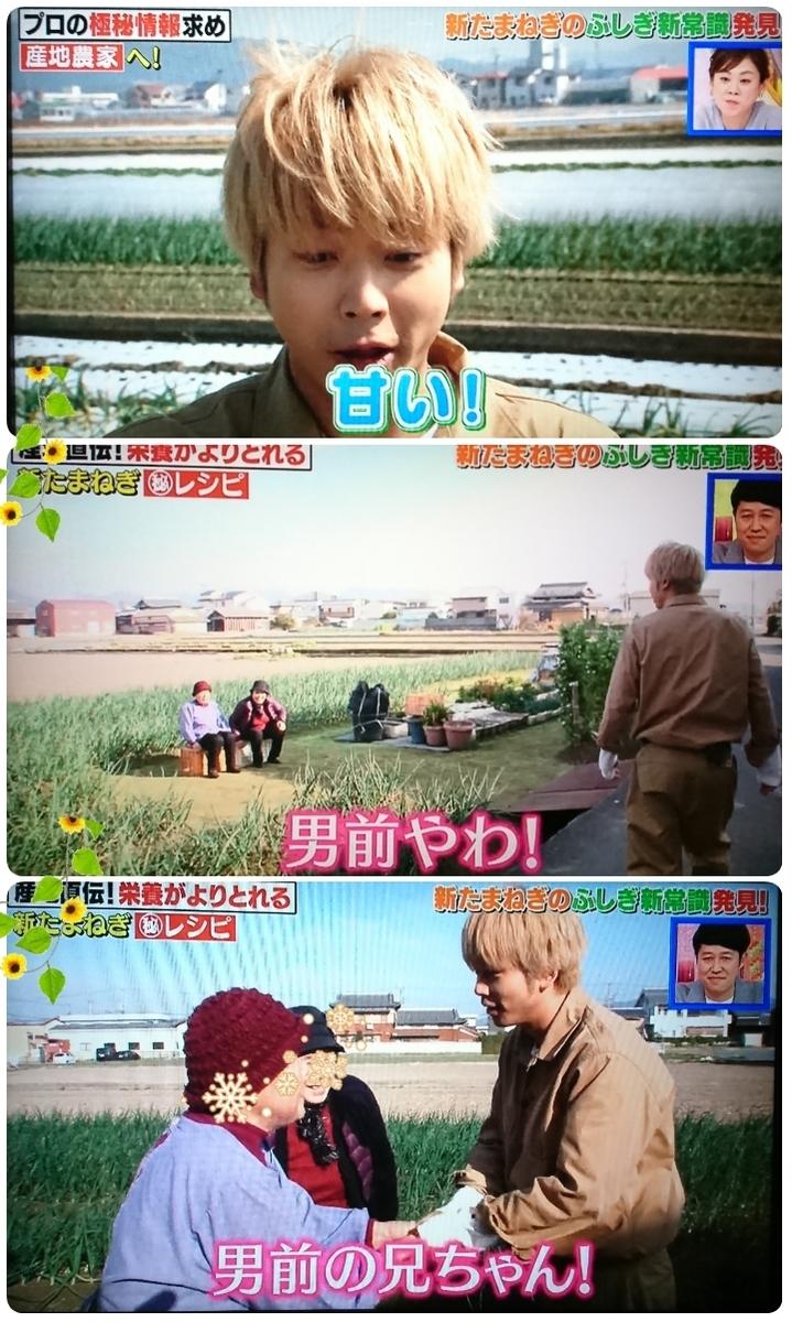 f:id:sunflower-shigeaki:20190416210309j:plain