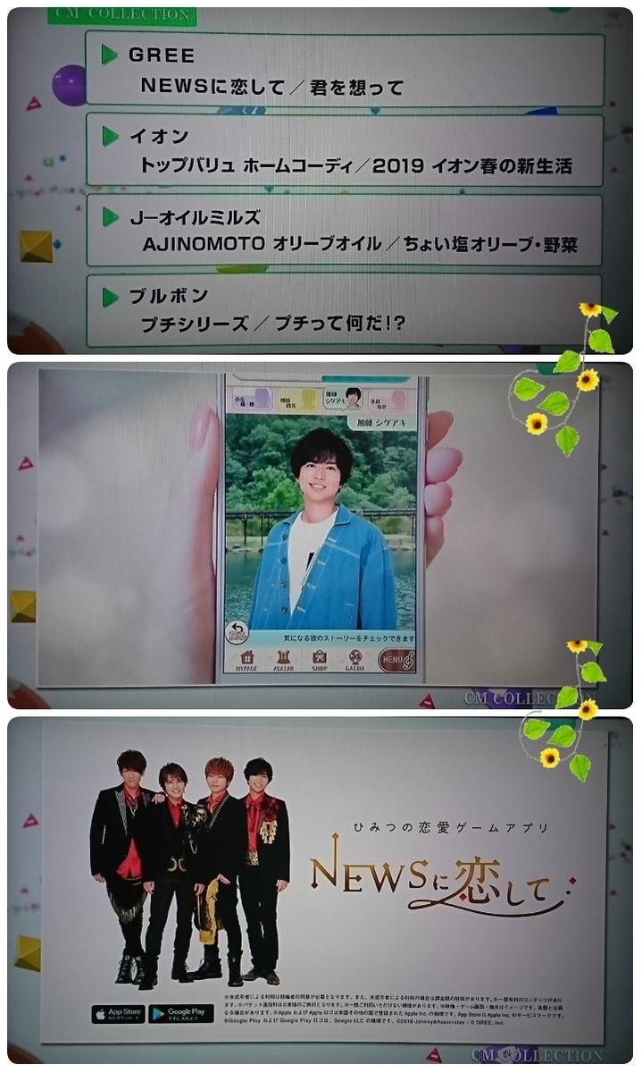 f:id:sunflower-shigeaki:20190420211516j:plain