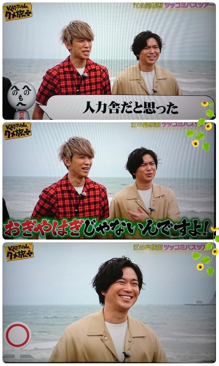 f:id:sunflower-shigeaki:20190618170054j:plain