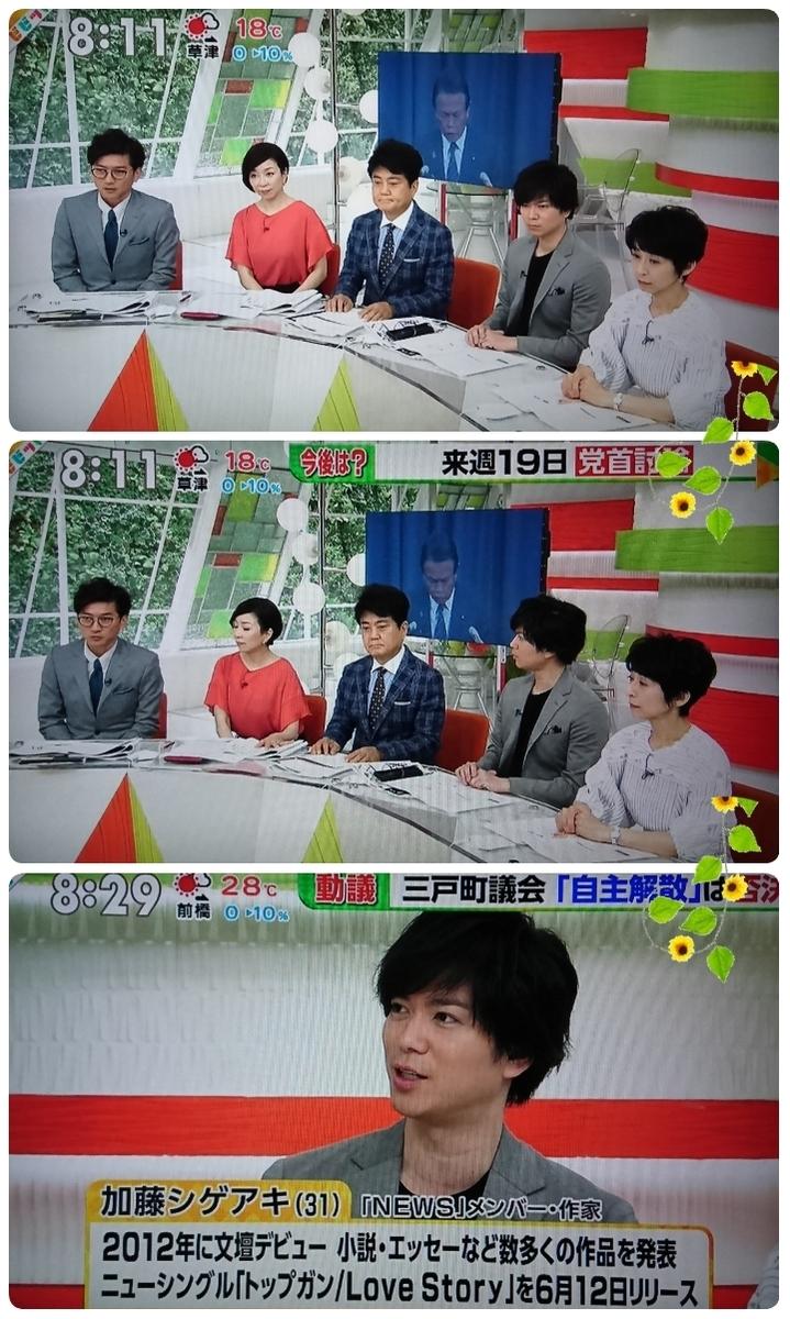 f:id:sunflower-shigeaki:20190619210038j:plain