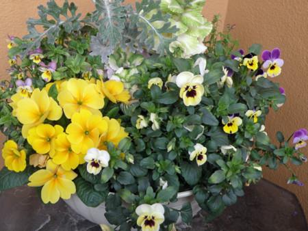 f:id:sunflower23:20130319185632j:image