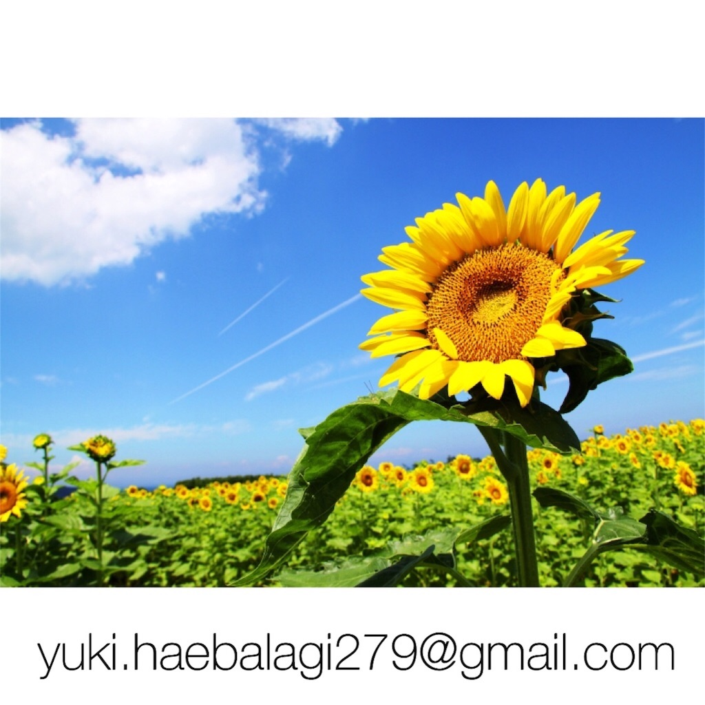 f:id:sunlife1023:20170221170958j:image
