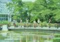京都新聞写真コンテスト 観光