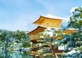 京都新聞写真コンテスト 雪化粧金閣寺