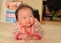 京都新聞写真コンテスト 百万ドルの微笑み