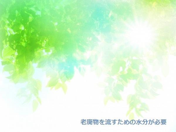 f:id:sunny-time:20200626194549j:plain