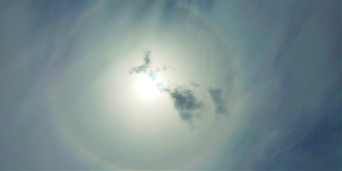 f:id:sunshine-light:20210425160428j:plain