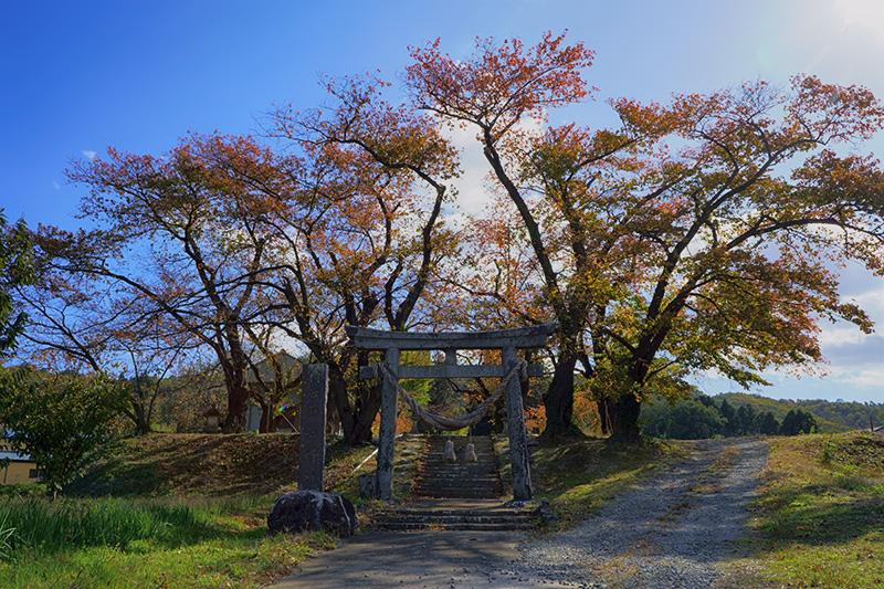 南福島〜金谷川の間の神社